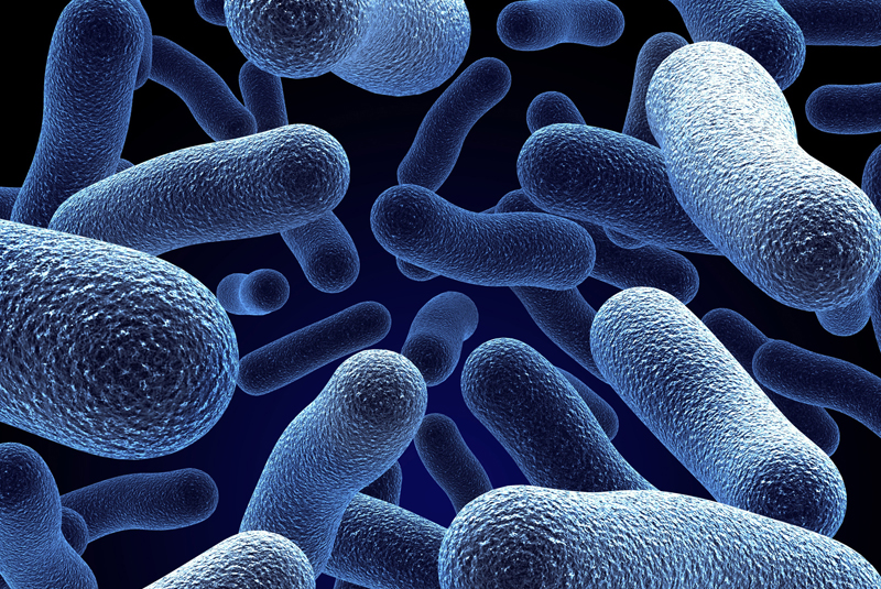 CIPHE warns of rise in Legionnaires' disease
