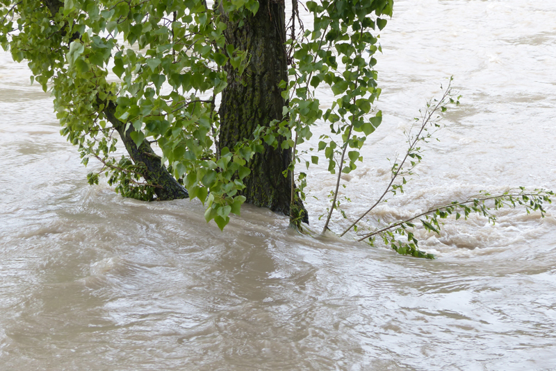 Xylem warns of further flooding