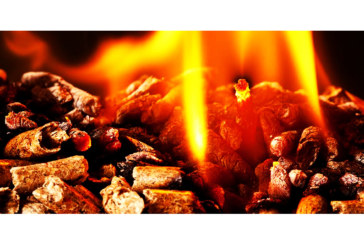 Woodsure calls for promotion of quality wood fuel