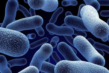 Take action against Legionnaires' disease