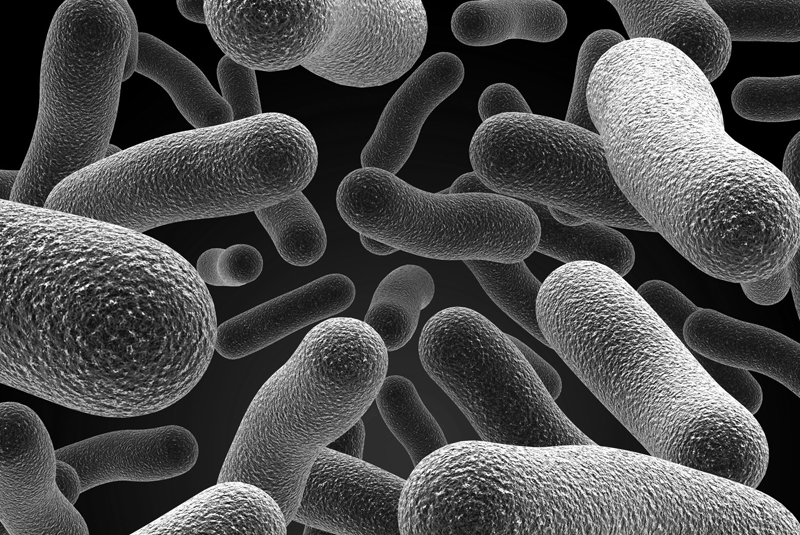 Legionella warning from the CIPHE