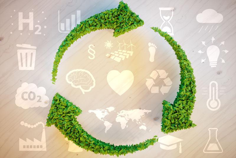 Industry feedback: Sustainability report