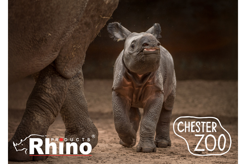 Rhino Products partners with Chester Zoo