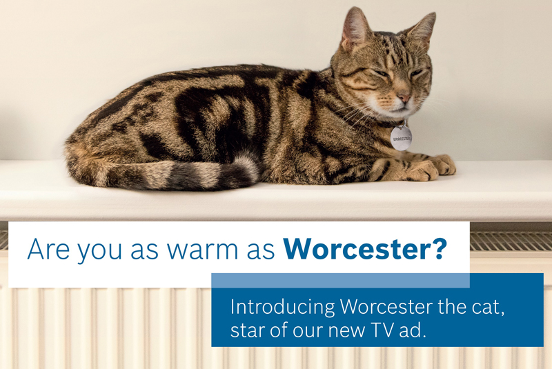 Worcester's new TV ad drops this month