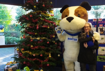 Santa Paws arrives at Kenilworth Dogs Trust