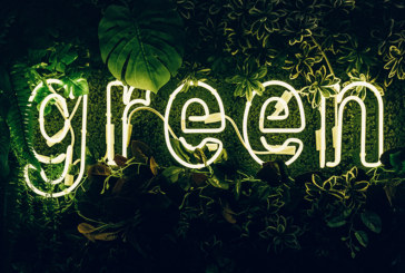 The Green Industrial Revolution – further reaction